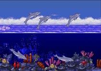 Bienvenue au spectacle de dauphins de Marineland!